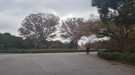 Imperial palace Tokyo (3)