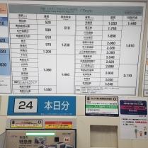 Tokyo (24)